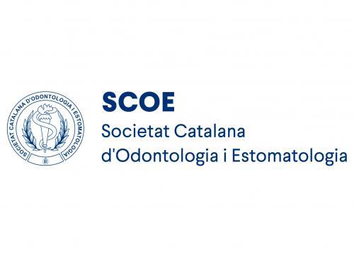 Participación curso SCOE